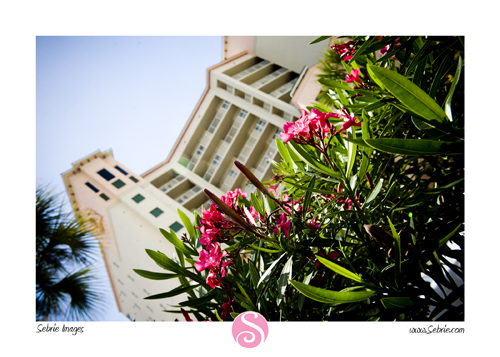 pink shell resort weddings